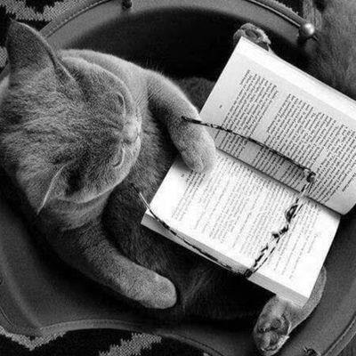 Petit compte sans prétention d'une humble lectrice souhaitant partager ses coups de coeur littéraires... A vos librairies : prêts? Lisez!