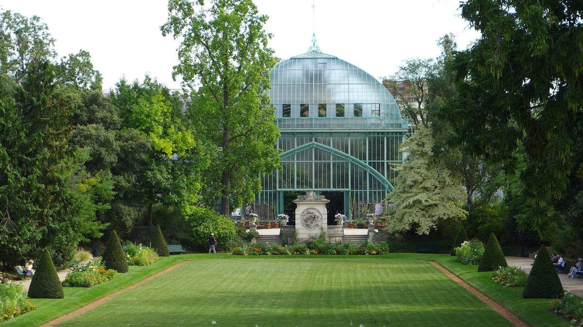 Jardin des serres d'Auteuil : palmarium