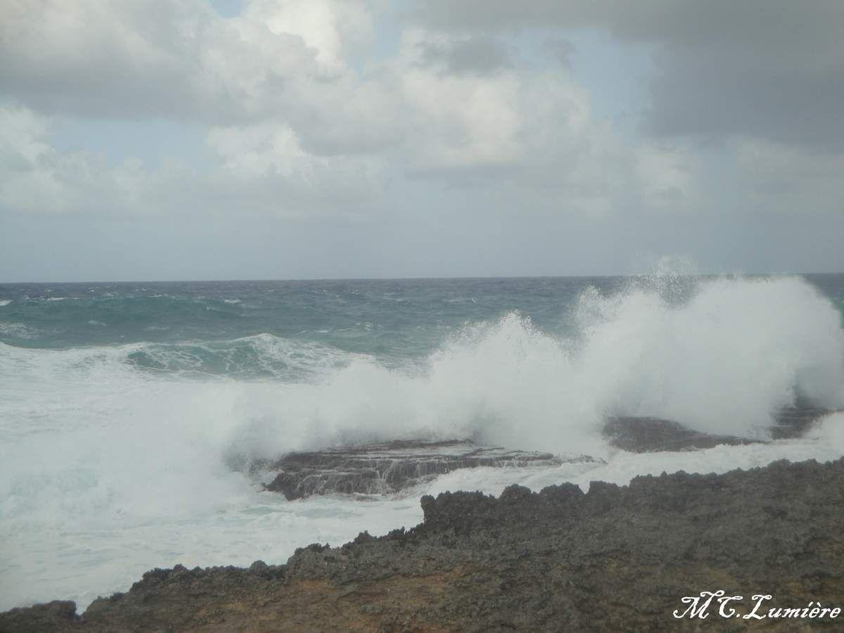 GUADELOUPE : Un avant gout de Grande Terre côté mer sauvage !