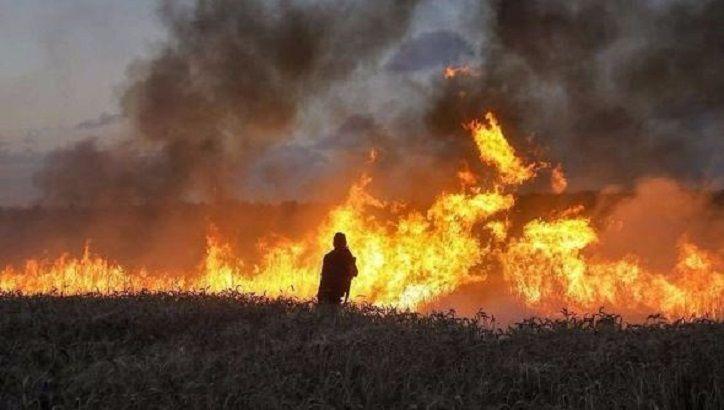 Ceux qui cultivent la terre et ceux qui la brûlent :  Le terrorisme incendiaire des origines du conflit israélo-arabe jusqu'à nos jours, par Pierre Lurçat