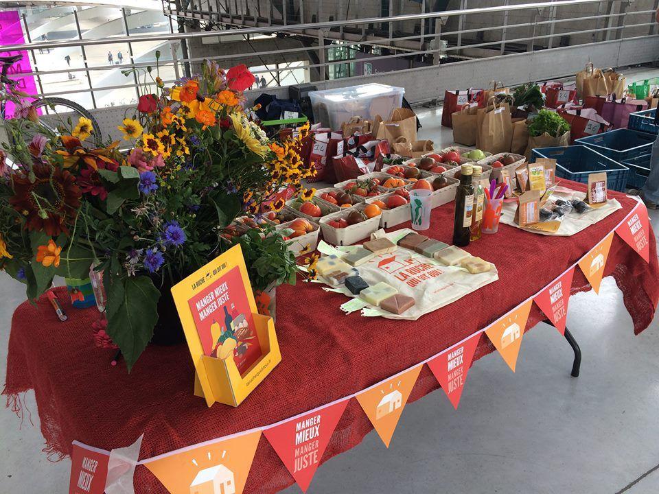 Les 1ères tomates et bouquets de fleurs de Jelle de la ferme du Pic Vert