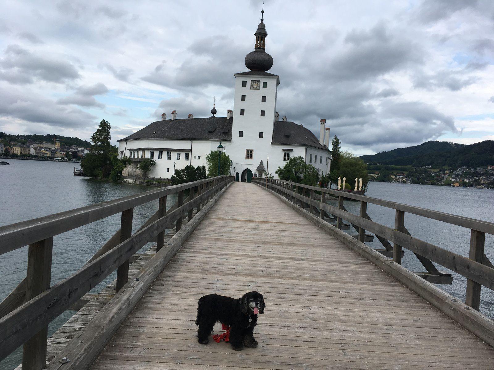 19 juin 2020 : Mondsee / Attersee / Traunsee (Autriche)
