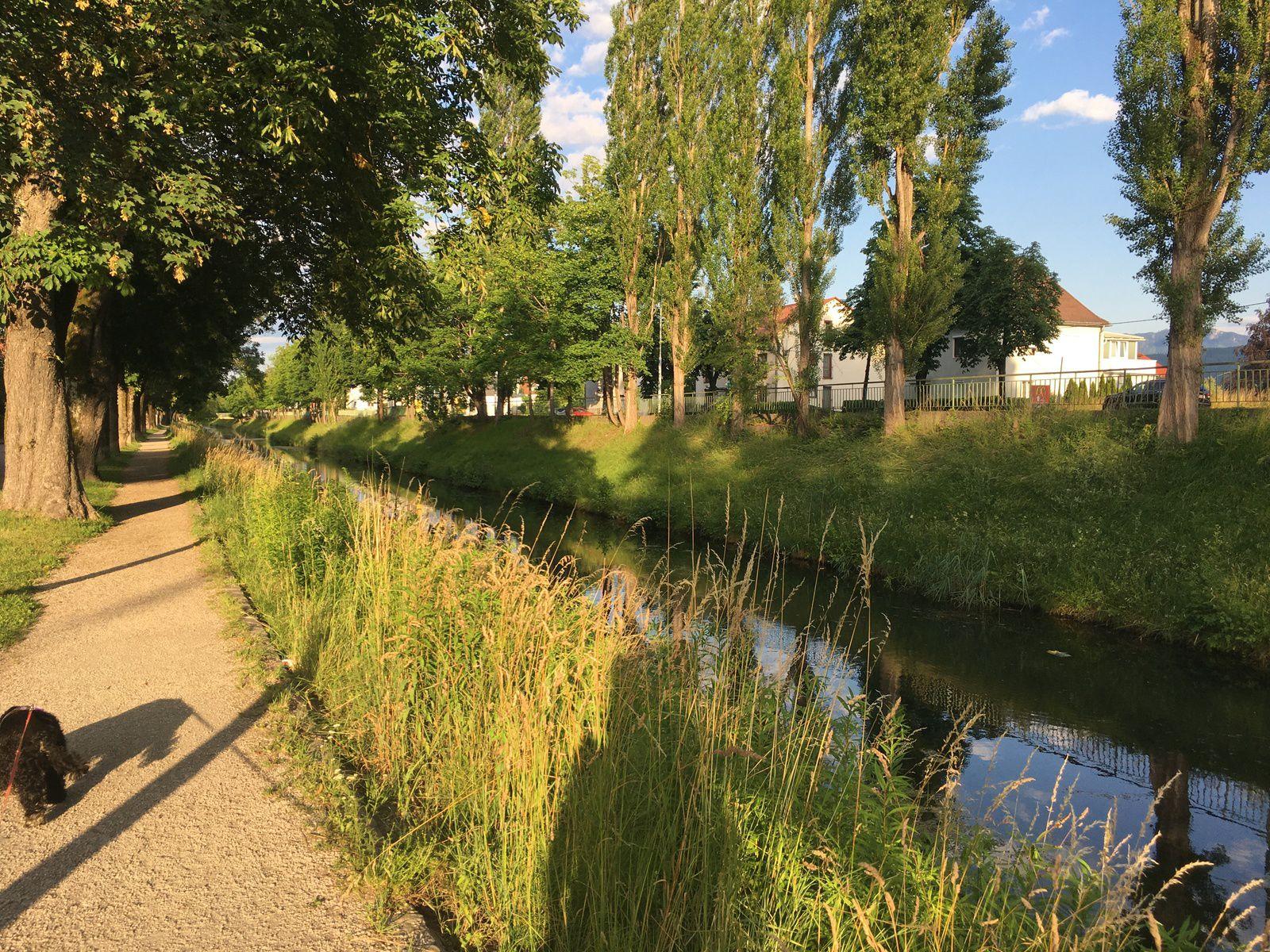 23 juin 2020 : Wörthersee / Klagenfurt (Autriche)