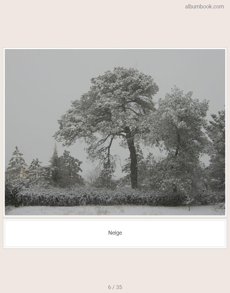 Métamorphoses (album)