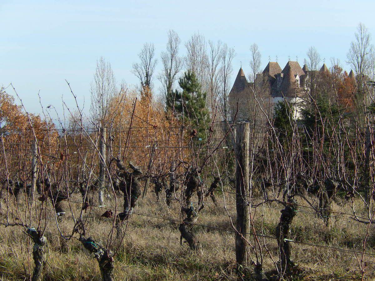 Monbazillac (le château)