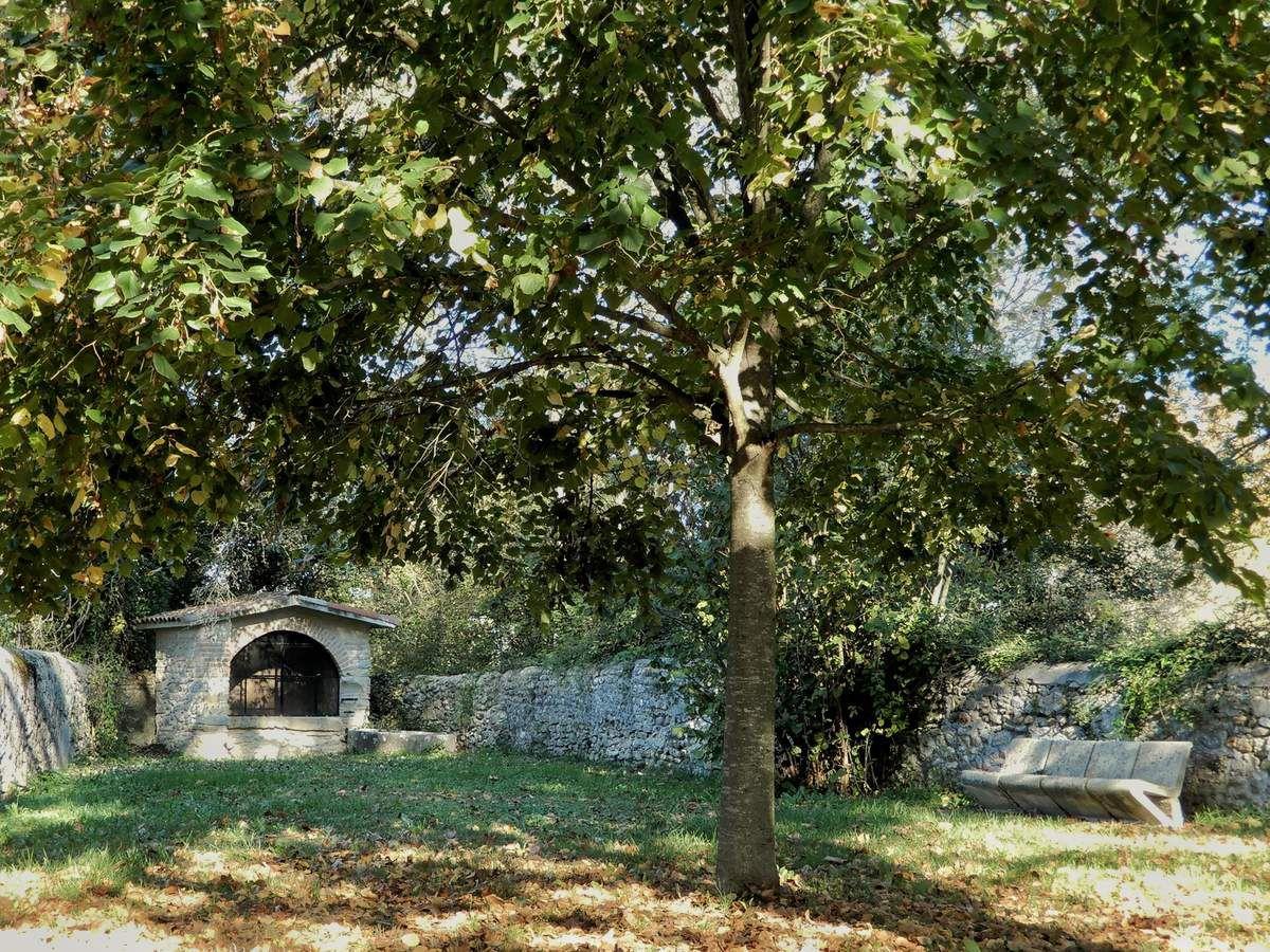 Notez que le banc le plus rustique, probablement le plus ancien, à toujours ses adeptes : la mousse reste partiellement à l'écart.