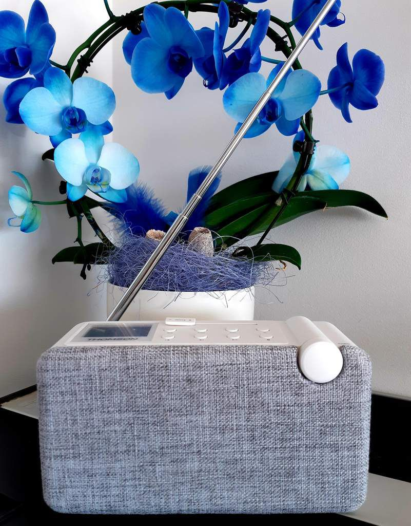 Enceinte, Thomson, musique, radio
