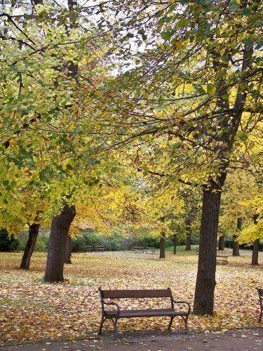 A la faveur de l'automne