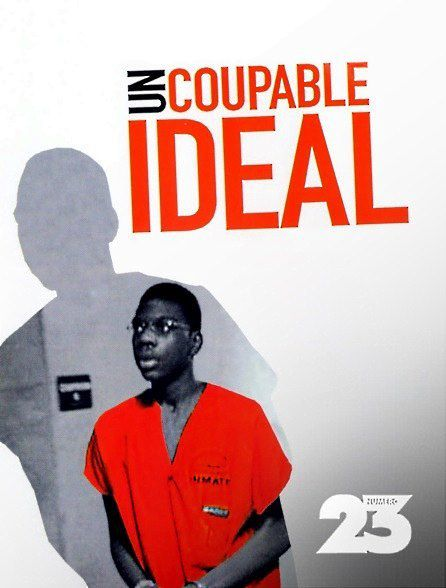 Un-coupable-ideal-documentaire-psycho-criminologie.com