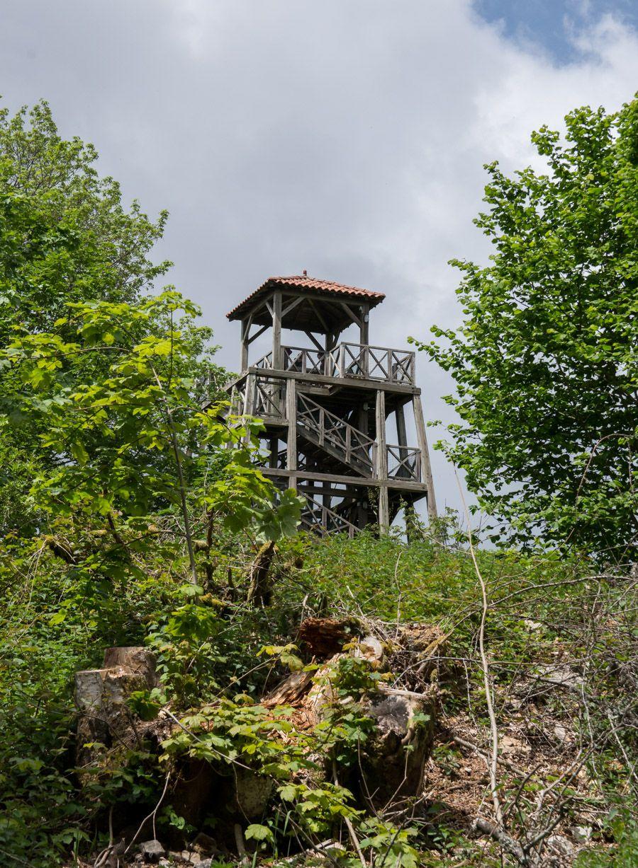 Randonnée Mont Saint Rigaud-Beaujolais