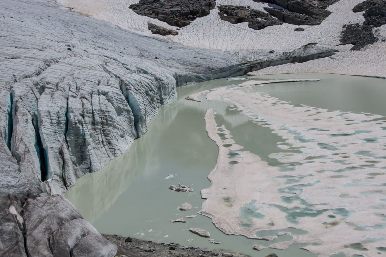 Le glacier du Grand Méan et ses bouquetins