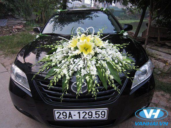 Chiếc xe cưới Toyota Camry hạng sạng của Vân Hải