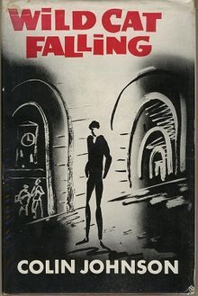 colin johnson, wild cat falling, first edition
