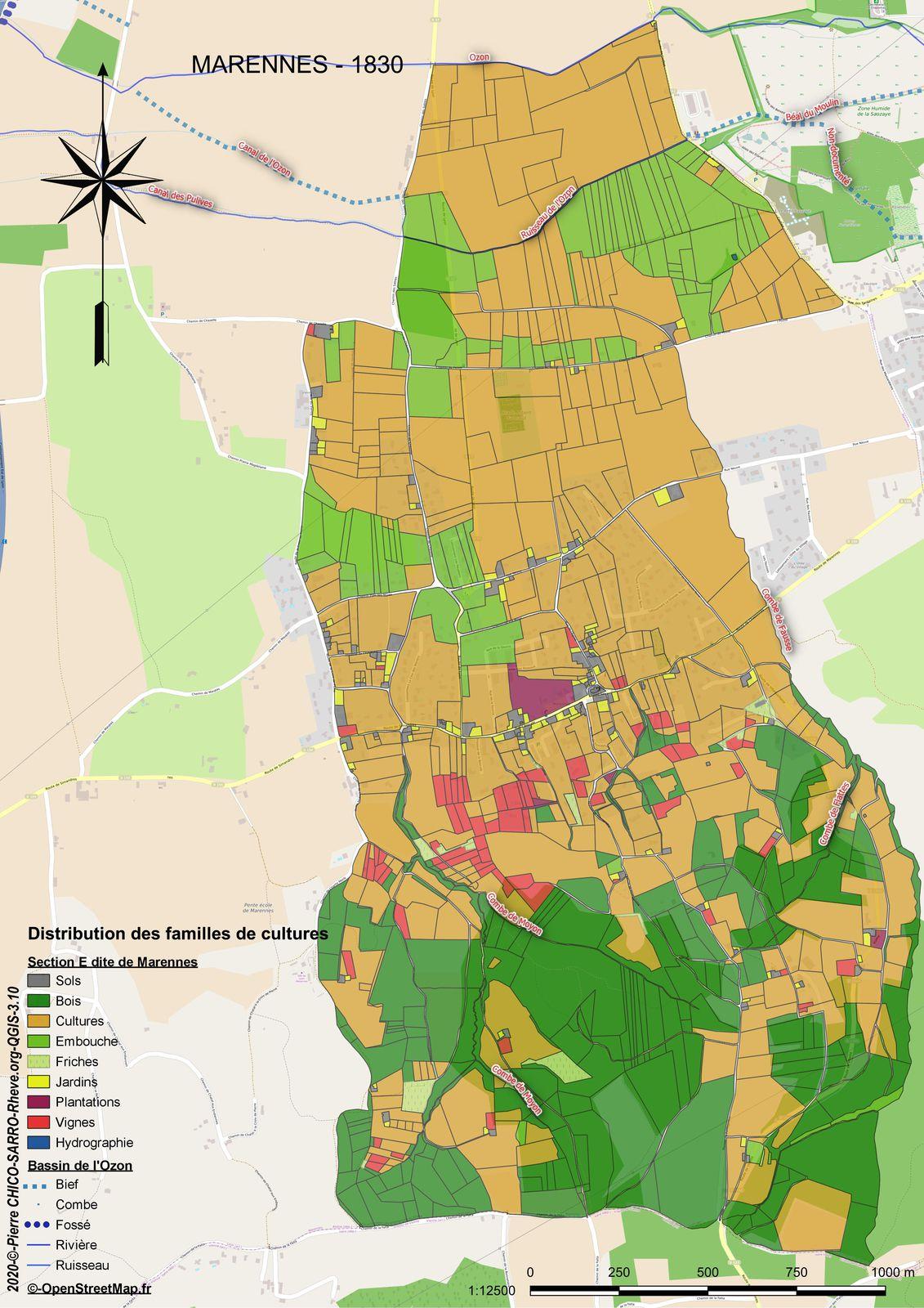 Distribution des familles de cultures de la section E dite de Marennes à Marennes en 1830