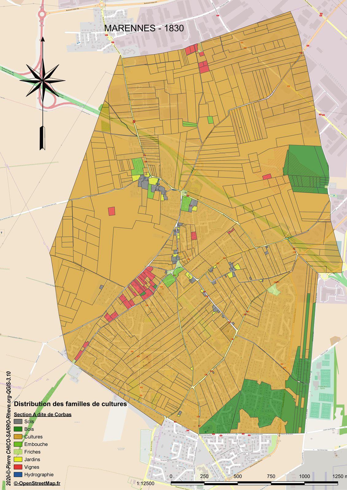 Distribution des familles de cultures dans la section A dite de Corbas à Marennes en 1830