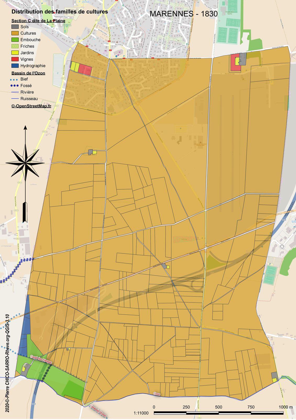 Distribution des familles de cultures dans la section C dite de La Plaine à Marennes en 1830
