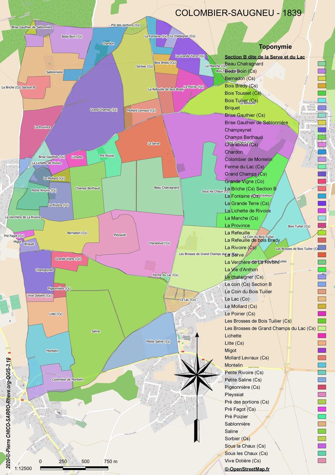 Distribution des toponymes de la section B dite de La Serve et du Lac à COLOMBIER-SAUGNEU en 1839