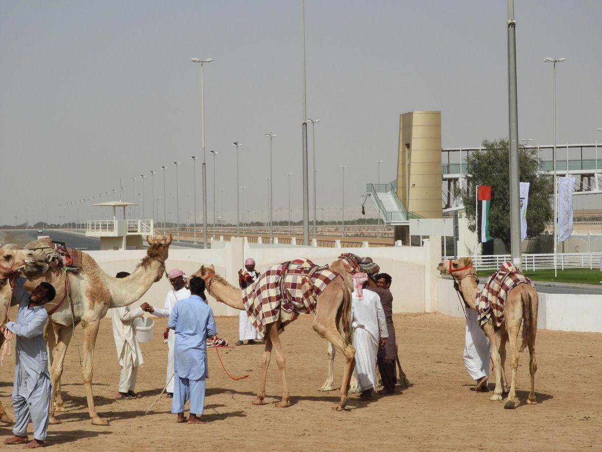 Dubaï en famille !