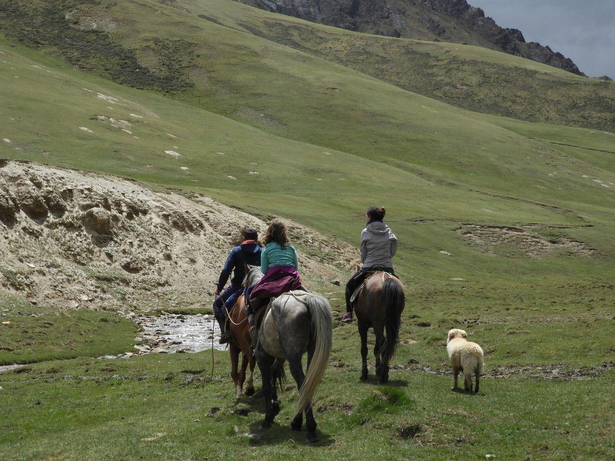 Yourtes, marmottes, steppes, yacks,chevaux sauvages... le Kirghiz nous émerveille