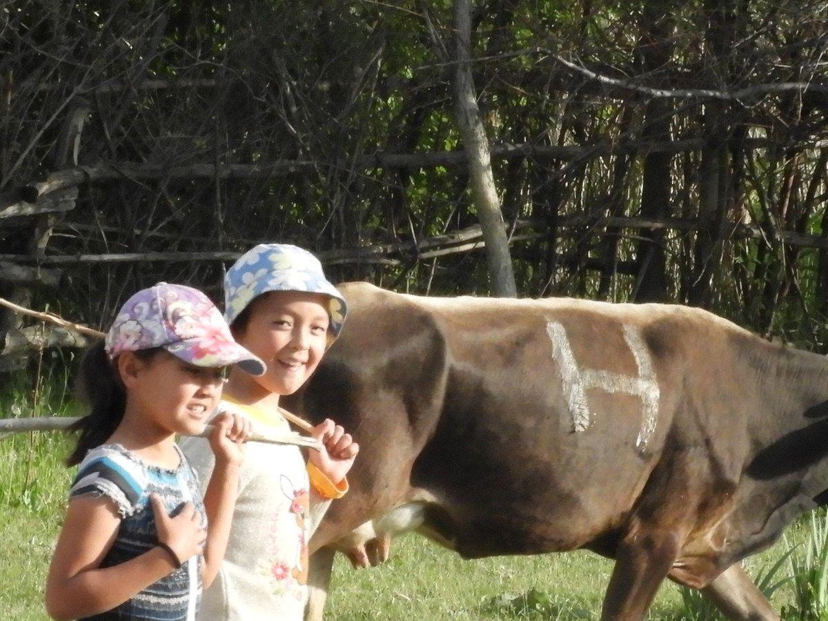 Le Kirghizistan: la nature XXL