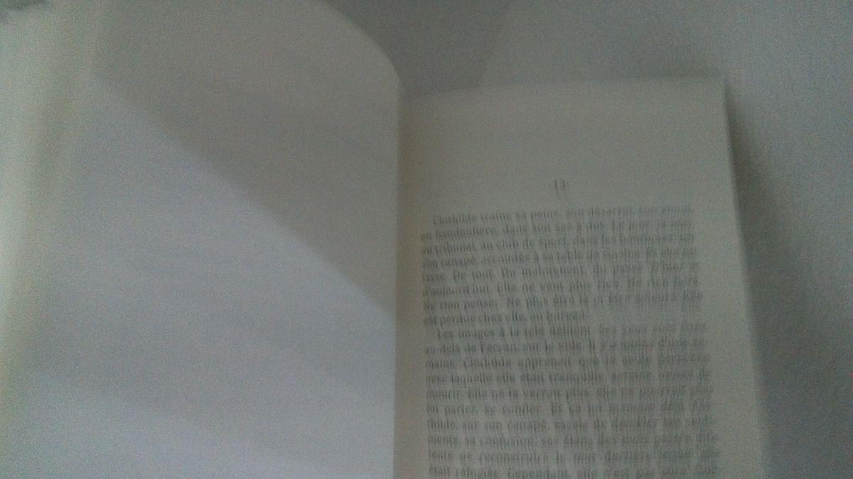 LE JUGE DE HAVRE AUX RENARD de Myriam Haugmard-Miney