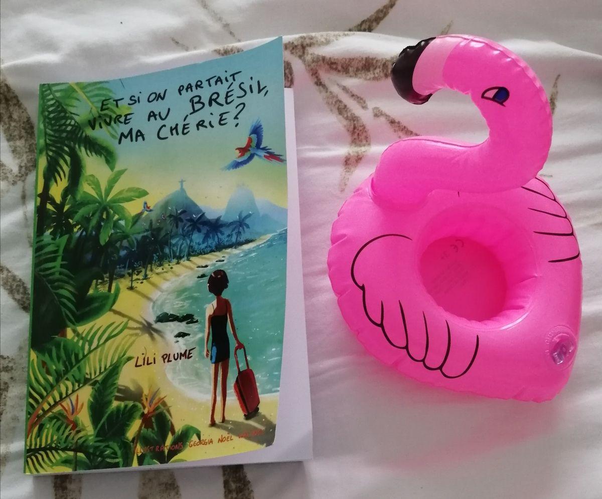 ET SI ON PARTAIT VIVRE AU BRESIL MA CHERIE ? par Lili Plume
