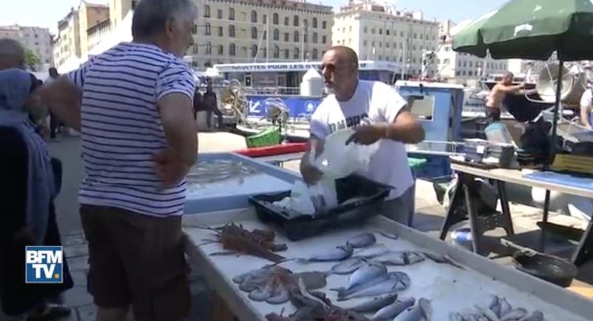 Marseille : les poissonniers du Vieux-Port verbalisés pour ne pas avoir mentionné le nom latin des poissons