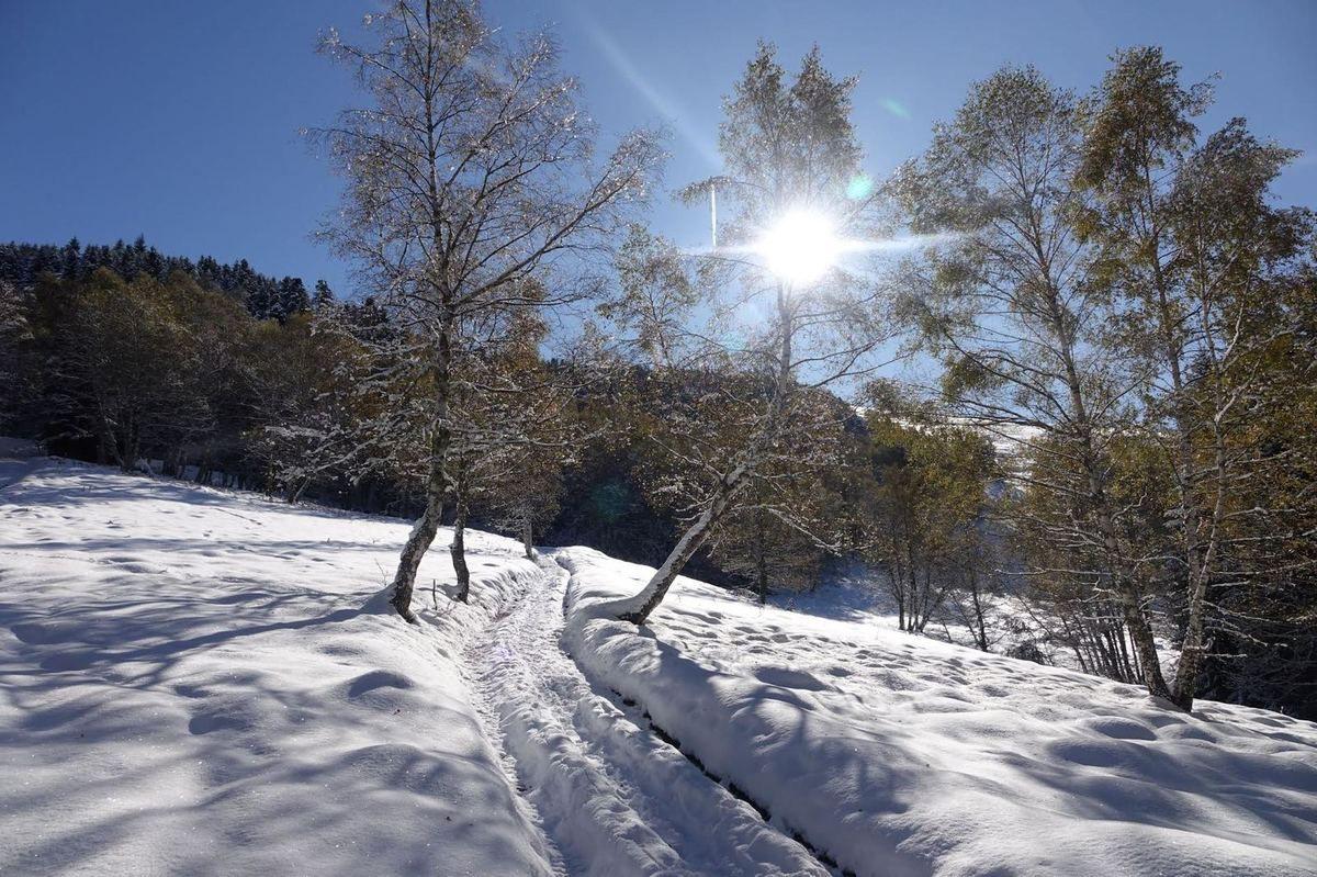 Artigue sous la neige... (1)
