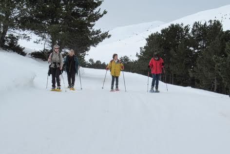 Pyrénées : randonnée en raquettes... à Montgarri