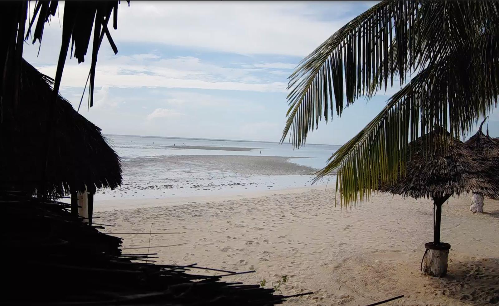 A Zanzibar, ce mardi 21 avril, depuis mon fauteuil de confiné...