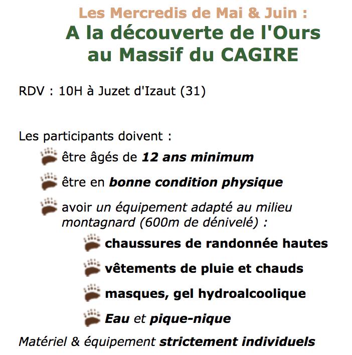 Luchon : partez à la découverte de l'Ours à l'Hospice de France