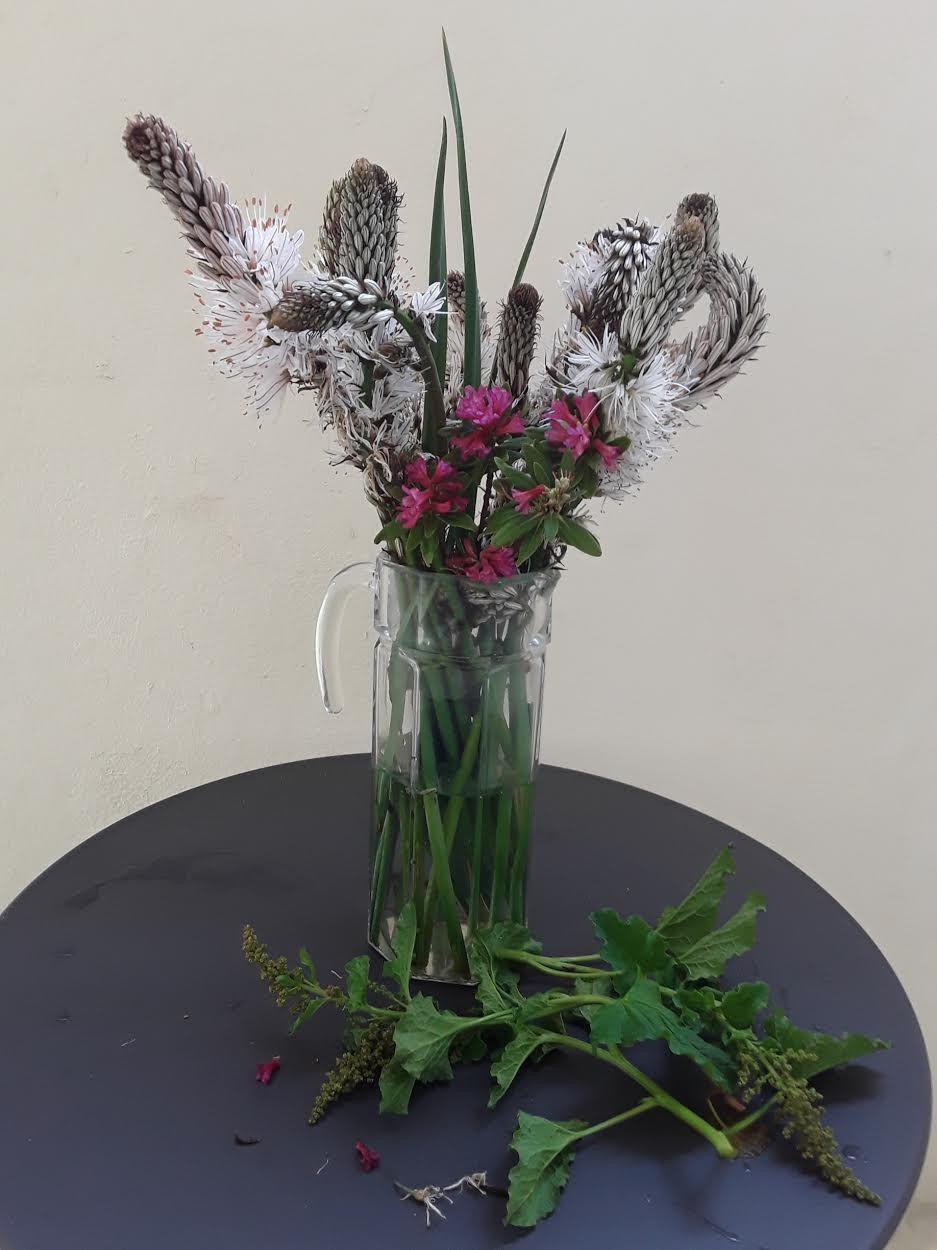 Création florale matinale...