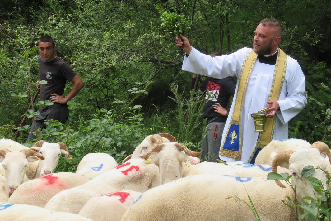 Transhumance en Vallée du Lys : bénédiction des troupeaux par l'abbé Arnaud Richard