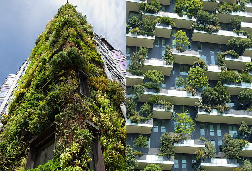 How to Get into Green Architecture