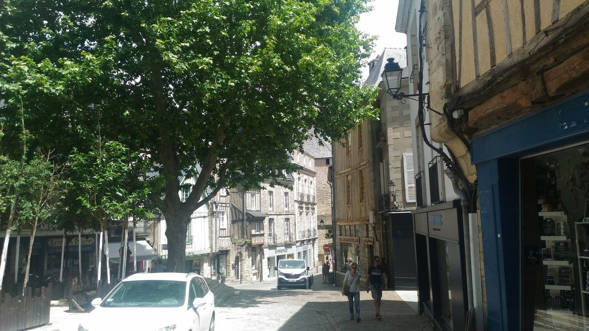 ONLAVU -Vannes en Bretagne