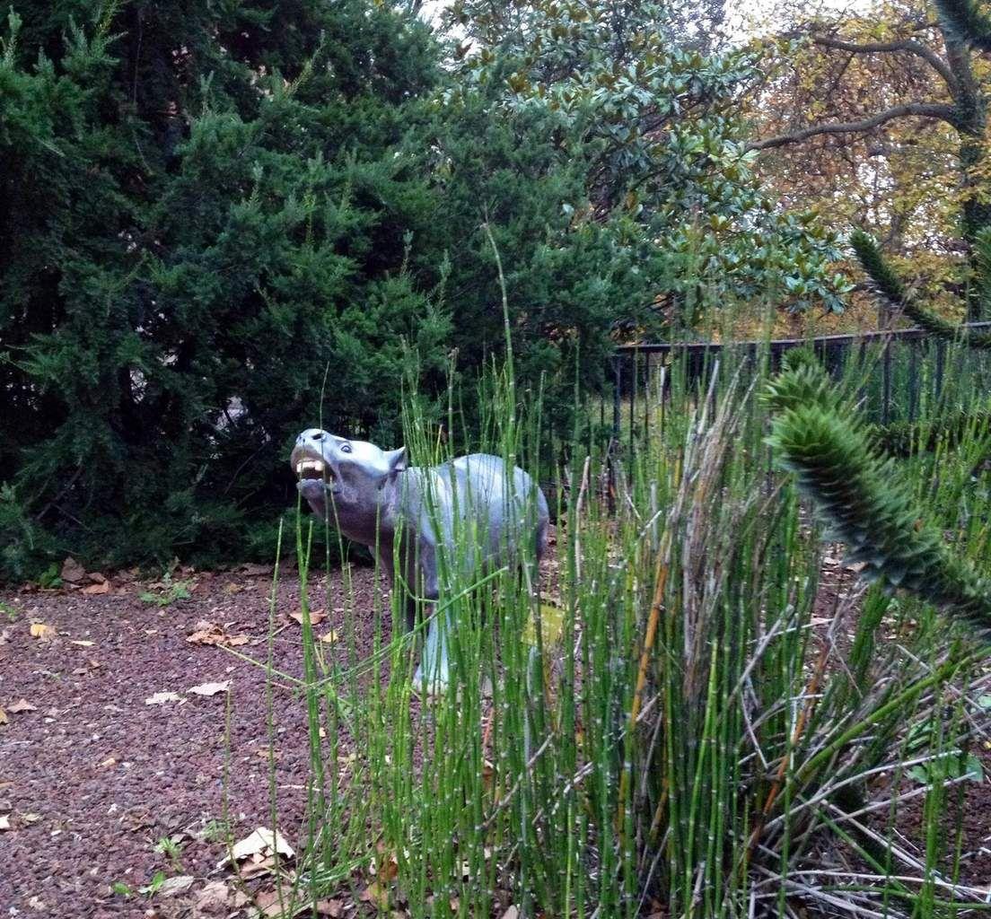 Le jardin des plantes à Paris - ONLAVU