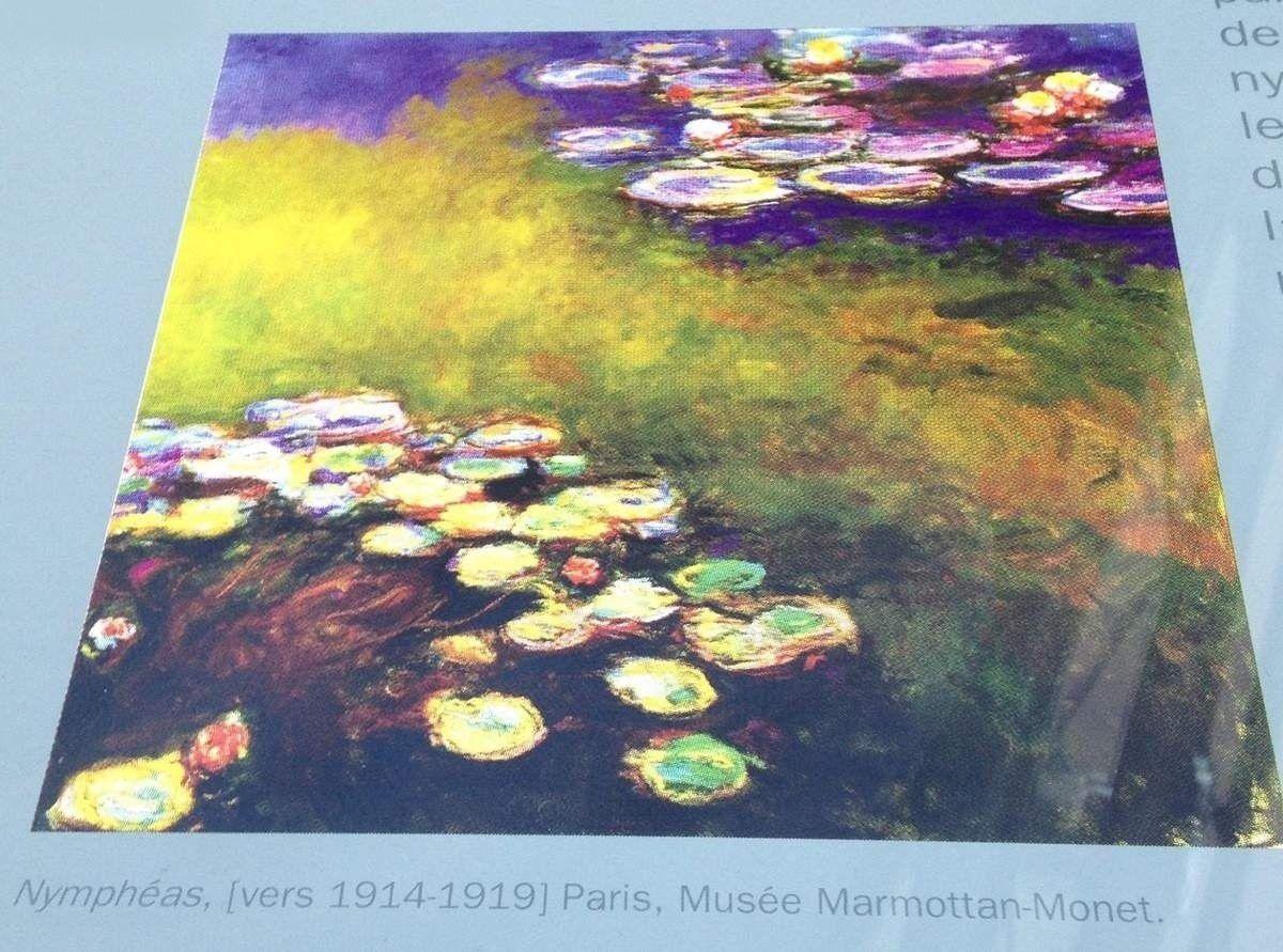 Les Nymphéas de Monet à l'Orangerie
