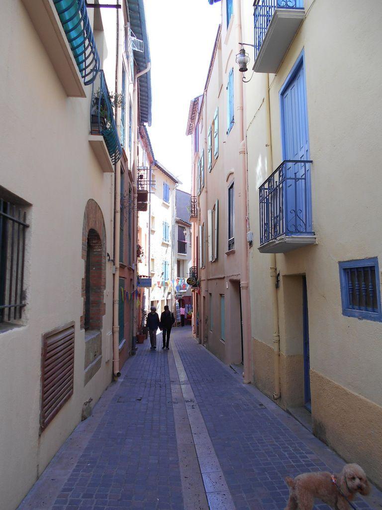 onlavu : Collioure