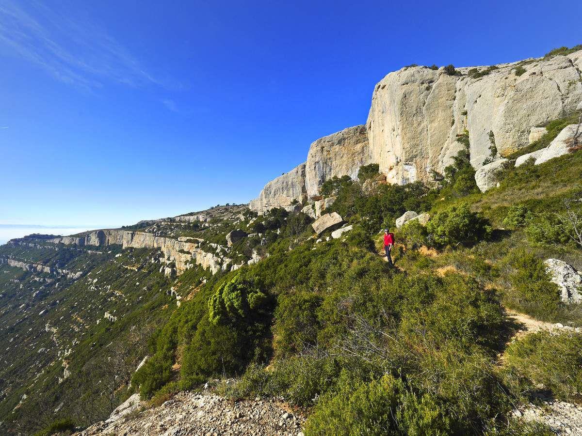 Vue vers les falaises plus à l'ouest dont on longera la crête avant de revenir à leur pied par le grau de la Montserrat.