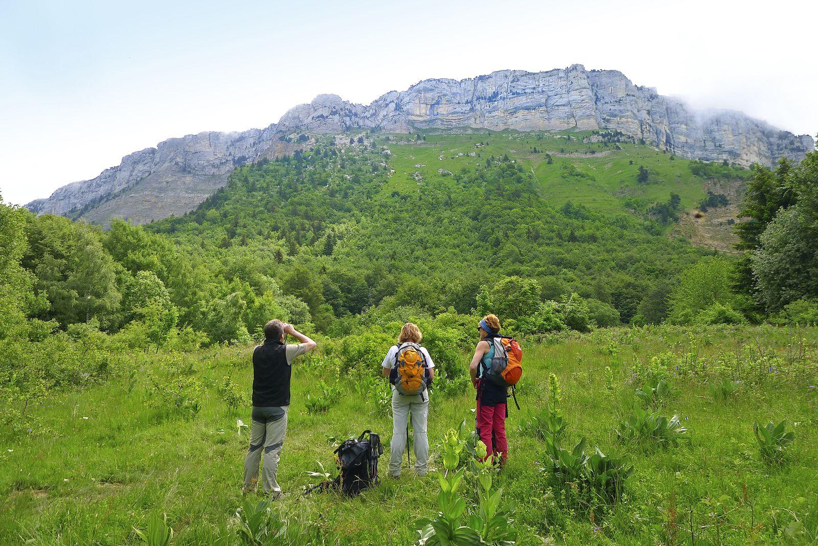 Depuis les prairies du Carre, observation des falaises ouest du Margeriaz où se faufile le Golet de l'Agneau.