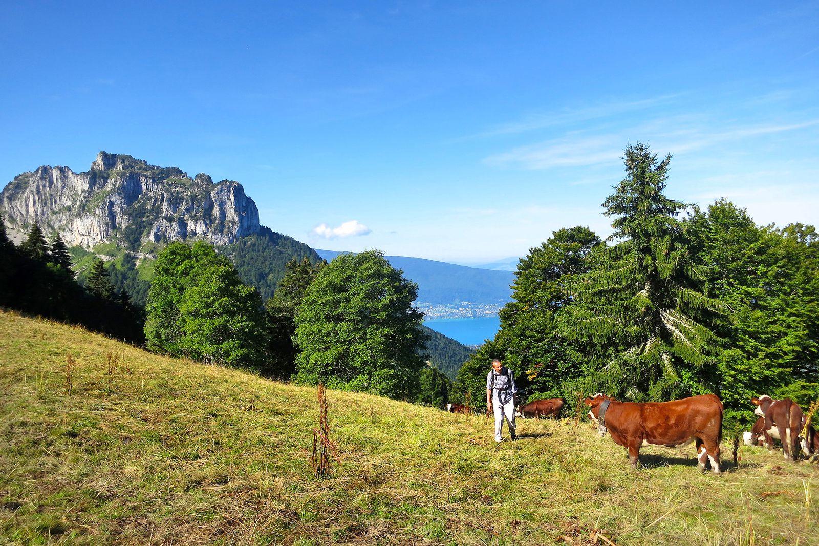 À la Rochette-Dessus, le lac d'Annecy apparaît timidement.