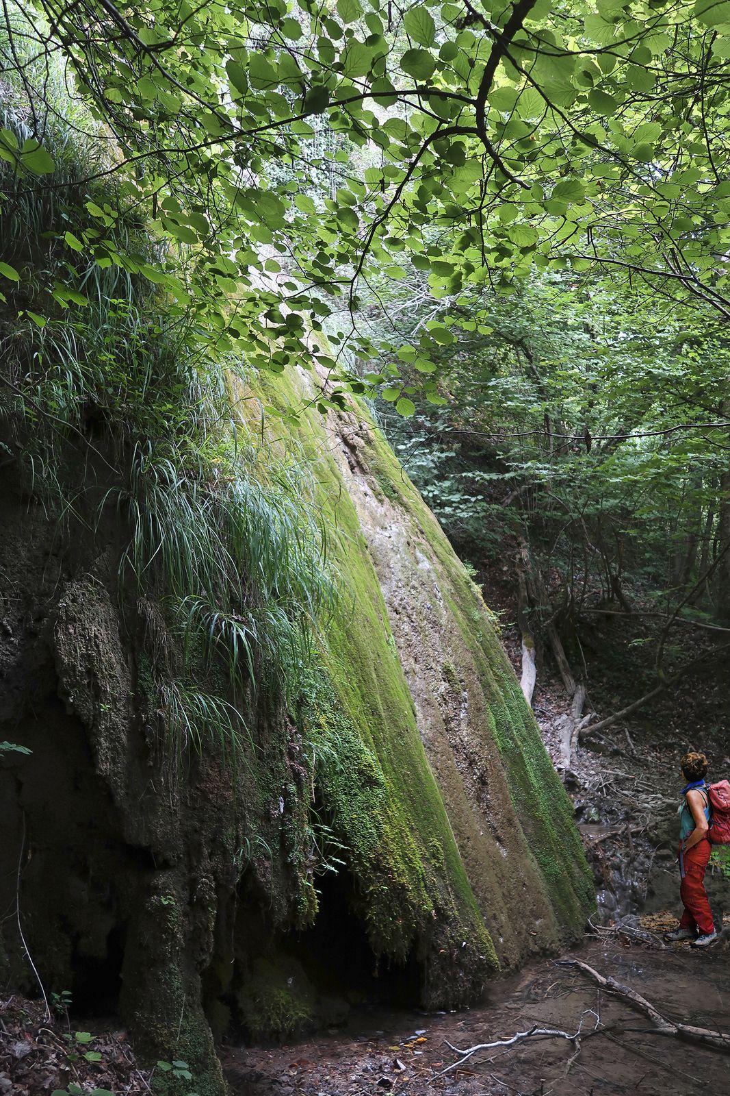 En traversant la Roize au niveau de la nacelle et de son câble, on peut admirer une jolie petite cascade de tuf.