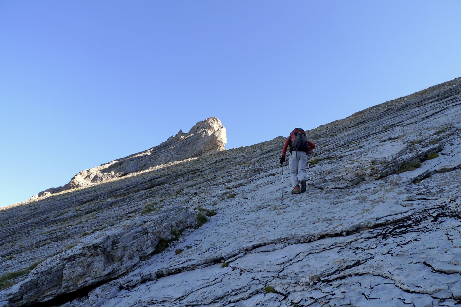 L'autre option est de descendre le versant est par le ravin de la Chabournasse. Ces dalles couvertes de genépi en constituent la partie haute, sous la brèche.