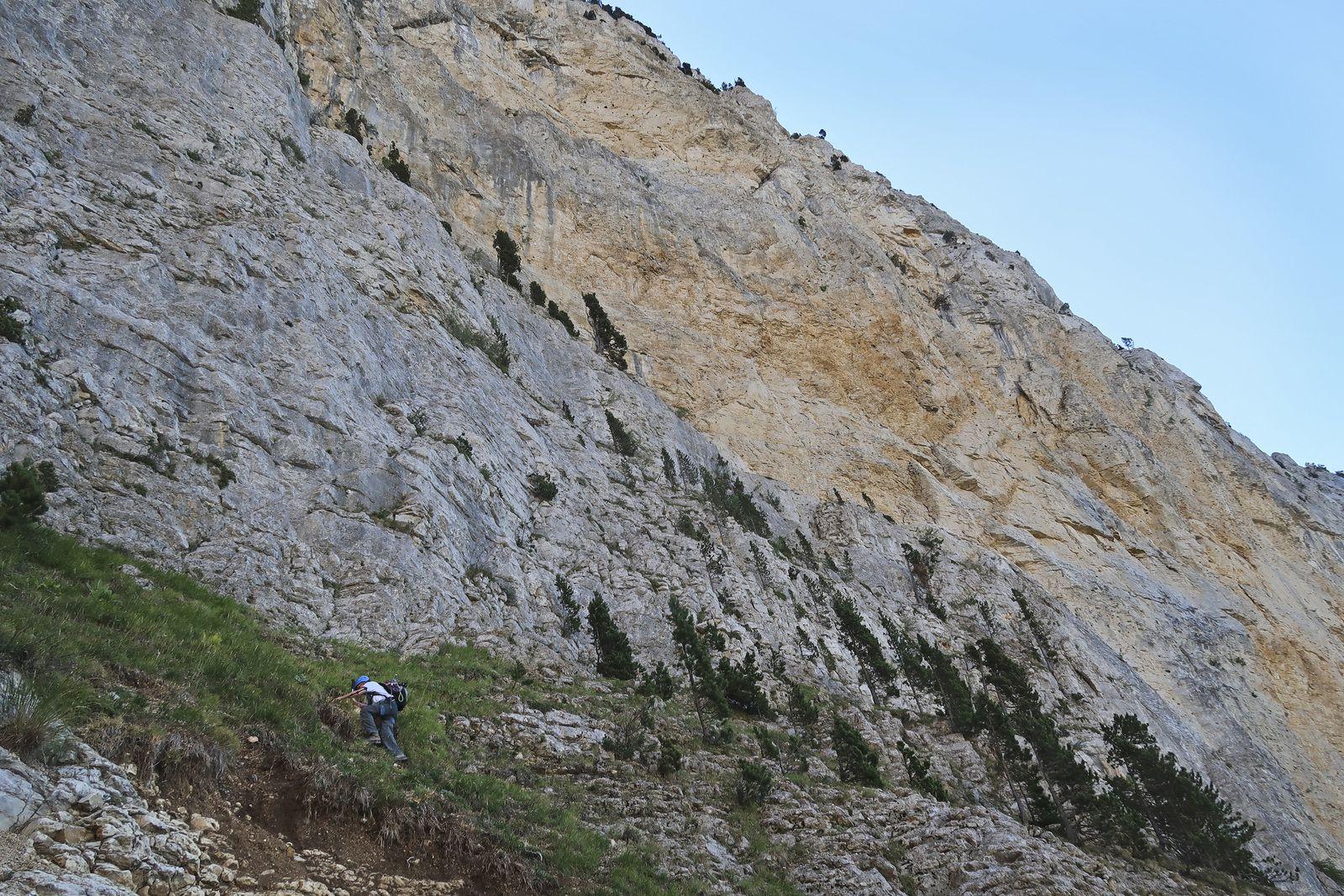 Arrivée sous la grande falaise jaune.