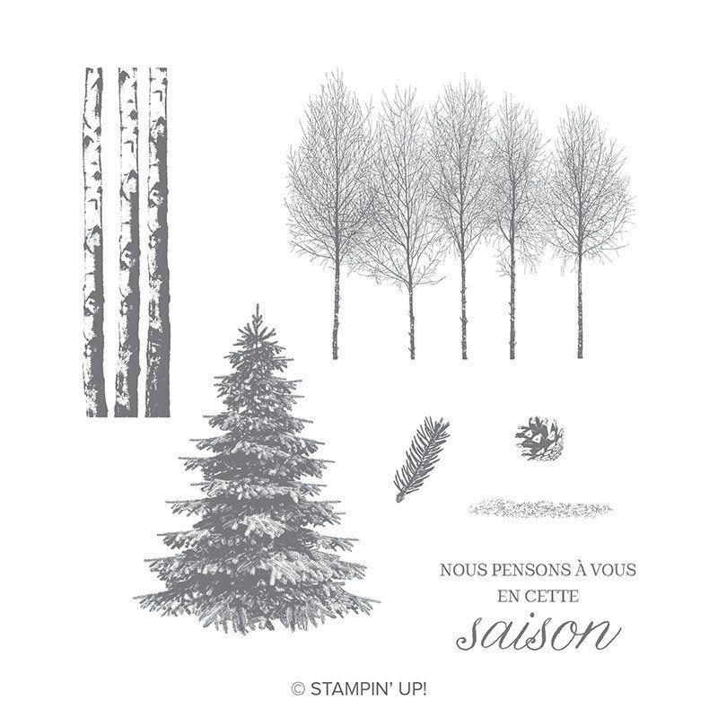 Bois hivernaux