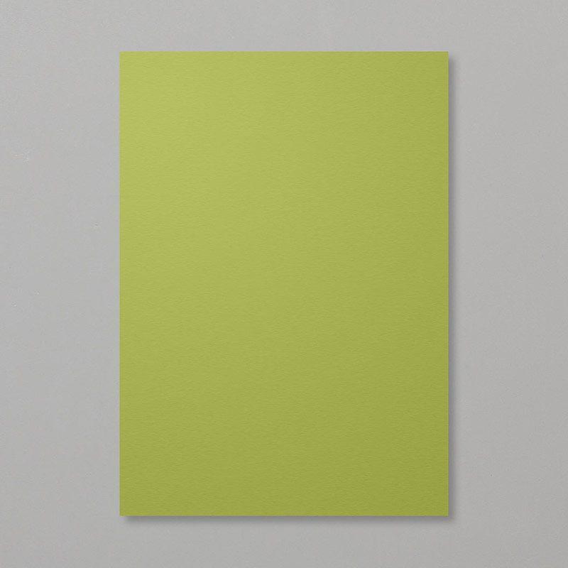 Papier A4 Vert olive