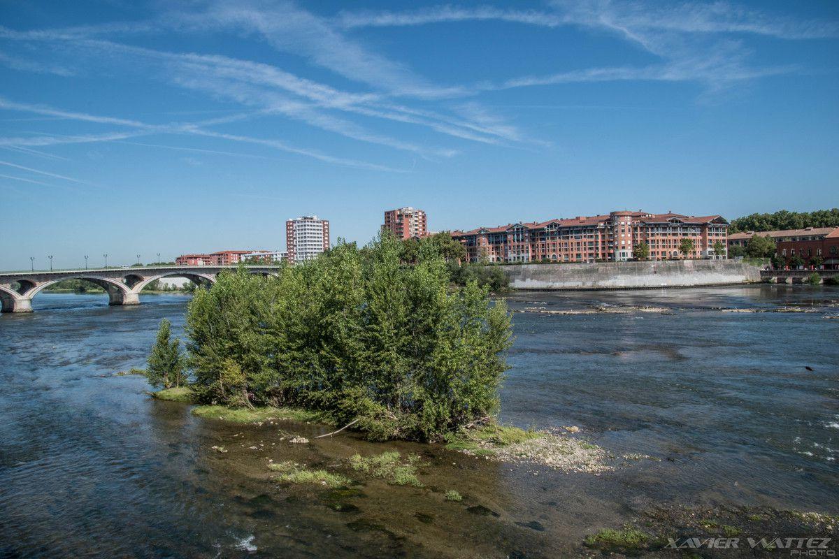 Un vendredi à Toulouse