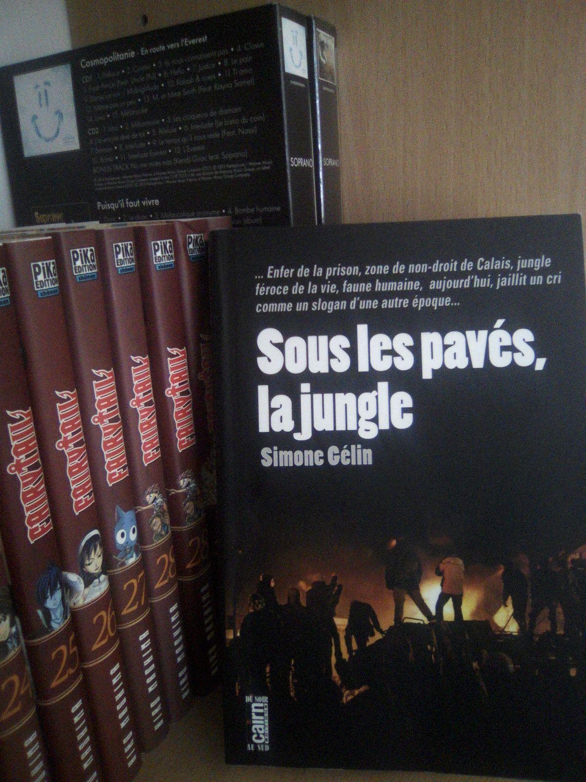AvisRomanNoir : Sous les pavé, la jungle de Simone GELIN (Ed Cairn)