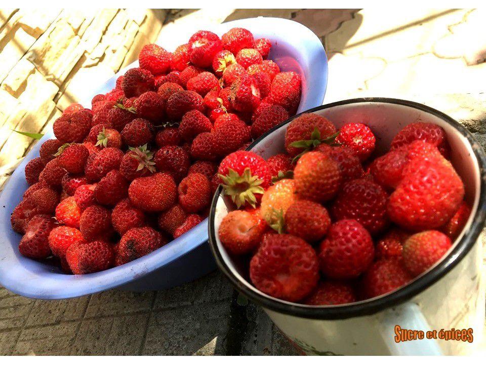 Crème glacée aux fraises facile sans sorbetière