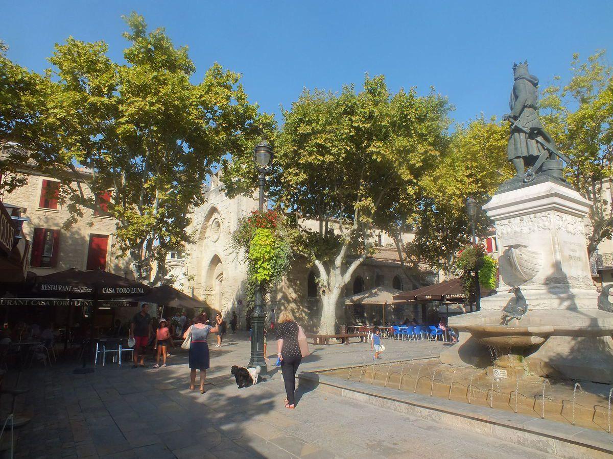 Camargue  en région Provence-Alpes-Côte d'Azur